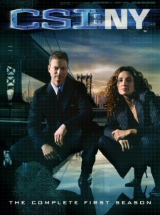 CSI NY: New York: Season 1 DVD