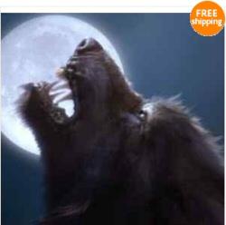 Werewolf spell