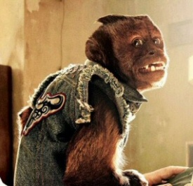 The monkey from The Hangover Part II
