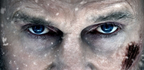 Liam Neeson from The Grey