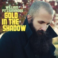 William Fitzsimmons: Gold in the Shadow