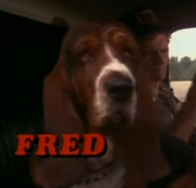 Fred from Smokey and the Bandit