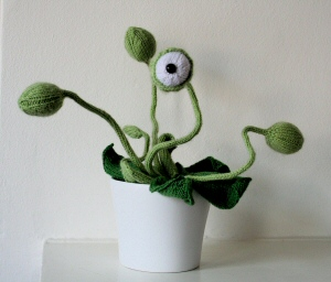 Cyclops Potted Plant