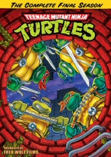 Teenage Mutant Ninja Turtles Season 10 (Final Season) DVD
